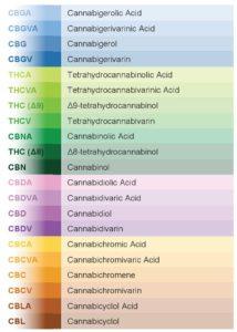 cannabinoide_understandingcannabis3