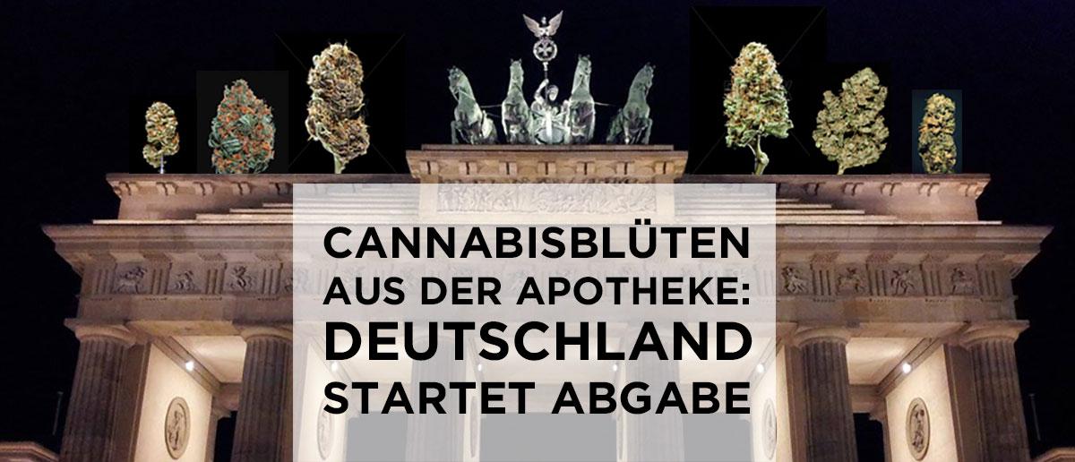 marihuana sorten apotheke
